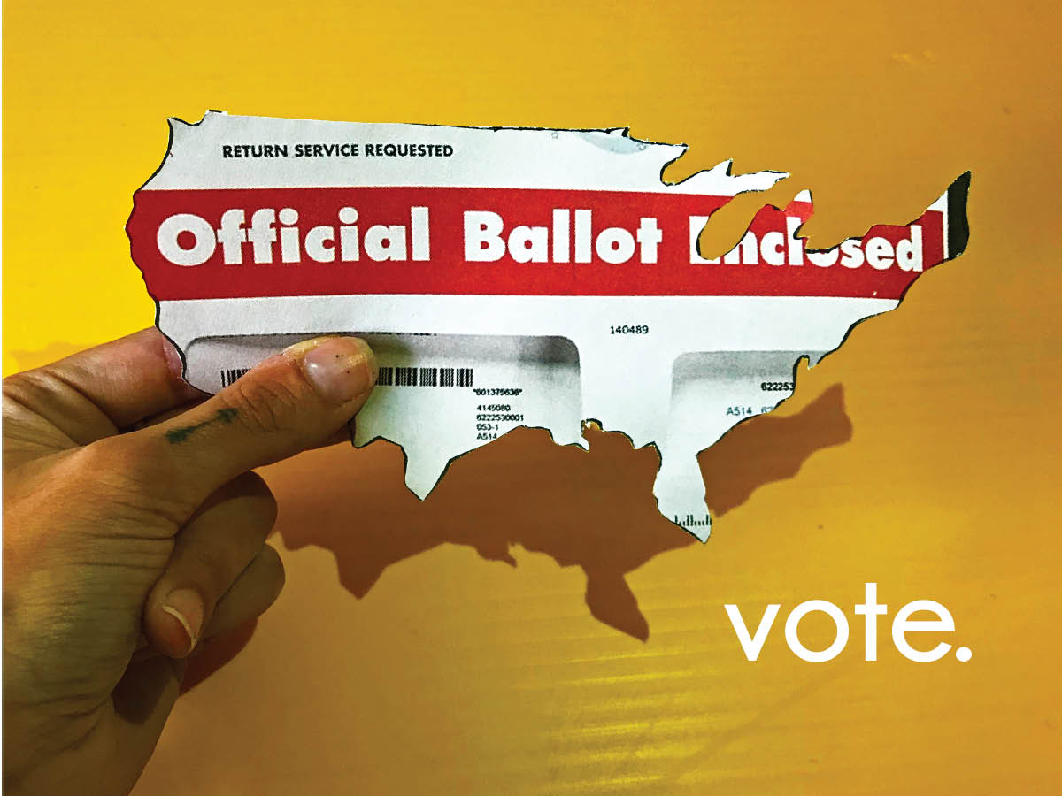Did You Vote?