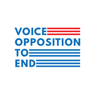 To Vote Is To Voice