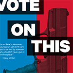 Vote on Gun Rights